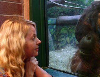 Heidi Contemplates an Ape
